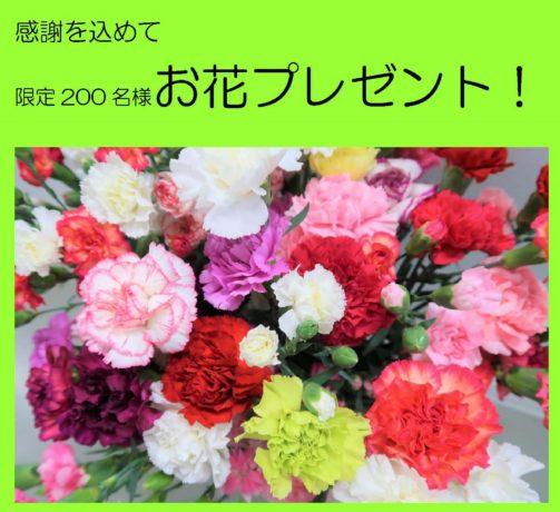 【1月号】🌸お花プレゼントはこちらから🌻